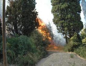 Edremitte çıkan yangın kontrol altına alındı