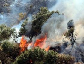 Kozanda 30 hektar orman kül oldu