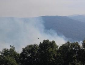 Mustafakemalpaşada orman yangını