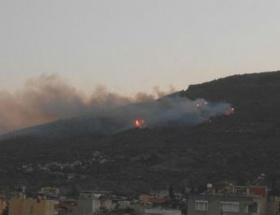 Sökede 4 Hektar alan yandı