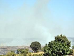 Midyatta orman yangını