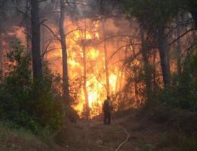 Kuşadasında orman yangını