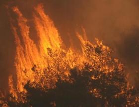 Gelibolu Yarımadasındaki yangın kısmen kontrol altında
