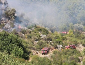 Aksekide orman yangını