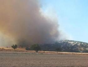 Bigadiçte 5 hektar orman yandı