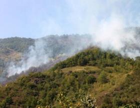 Osmaniyede yeniden yangın!