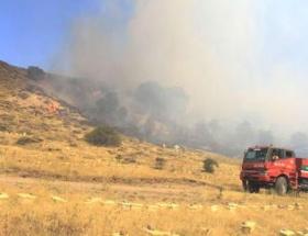 Ankaranın Kazan ilçesinde orman yangını