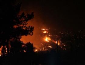 Dalamanda orman yangını