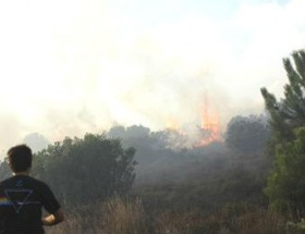 Ormanda 1 hektarlık alan yandı