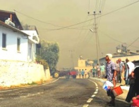 Milasta korkutan orman yangını