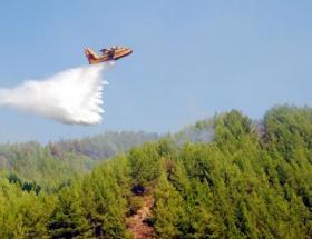 Başakşehirde orman yangını