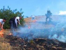 Çiftçiler ormanı yaktı