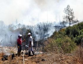 Üniversite ormanında ikinci yangın