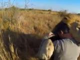 Aslanlara fısıldayan adam