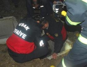 Güvenlik görevlisini darp edip çukura attılar