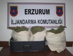 Jandarma, 15 kilogram esrar ele geçirdi