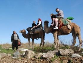 Side Antik Kentte deve turları başladı
