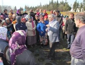 Hendek Belediye Başkanı İnci: 60 bin fidan diktik