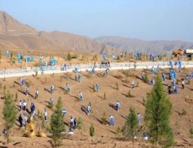 Türkmenistanda çöller yeşeriyor