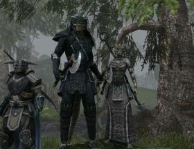 The Elder Scrolls Onlinea ilk güncelleme geliyor