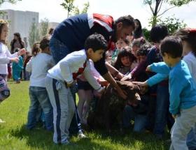 Jandarma köpeklerinden çocuklara gösteri