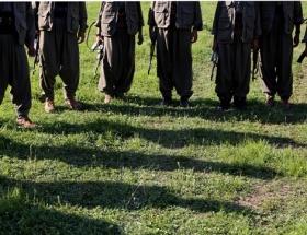 10 günde 40 PKKlı teslim oldu