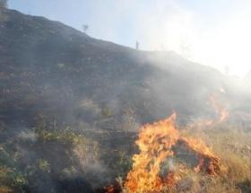Karaburun ve Urlada orman yangını