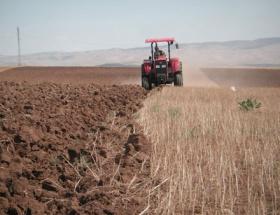 Tarımda sınırsız üretime geçiliyor