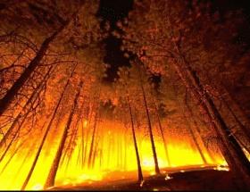 ABDde yangın faciası