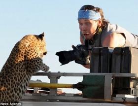 Leopara yem oluyordu