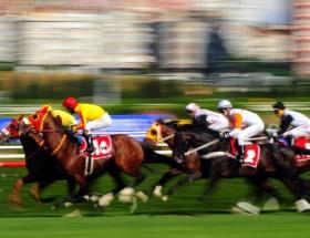 At yarışları 5 Şubata ertelendi