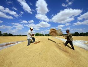 Tarım sektörü 7. sıraya yükseldi