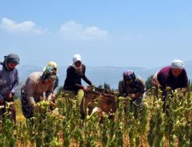 Tarıma destek sadece Türkiyede arttı
