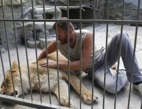 Aslanlarla aynı kafeste yaşayacak
