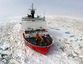 Buzulların erimesi onlara yaradı