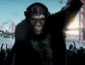 Maymunlar hâlâ zirvede
