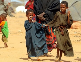 Sıtma geçen yıl 655 bin can aldı
