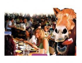 At etleriyle ilgili ciddi sağlık riski yok