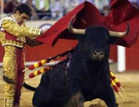 Barcelona arenasında son boğa güreşi