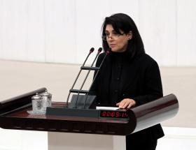 Zana: Erdoğan bu işi çözer
