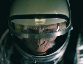 İranın uzay maymunu telef oldu