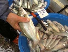 EBK artık balık da satacak