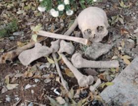 Vanda yapılan kazıda insan kemikleri bulundu