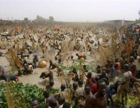 Afrika ve Asyada kentsel nüfus artacak