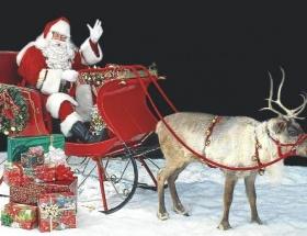 Noel Baba geyikleri