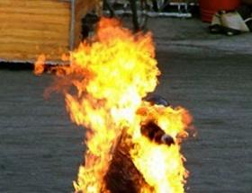 Tunusta bir işsiz kendisini yaktı
