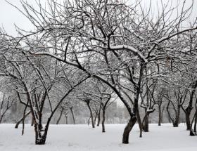 Başkent için buzlanma uyarısı