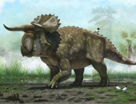 Yeni bir dinozor keşfedildi
