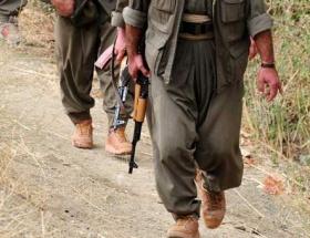 Almanyada PKKya darbe