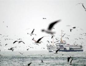 Marmarada fırtına !